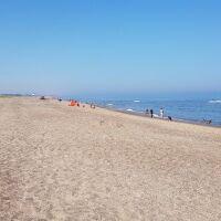 Seaside dog-friendly Bar and Restaurant, Lincolnshire - sutton on sea dog-friendly beach.jpg