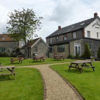 Dog-friendly pub with large garden near Shepton Mallet, Somerset - somerset dog-friendly pub.jpg