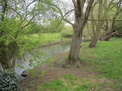 Dog-friendly pub with overnight camping, Suffolk - Driving with Dogs