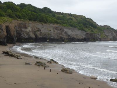 Sandsend dog-friendly beach, North Yorkshire - Driving with Dogs