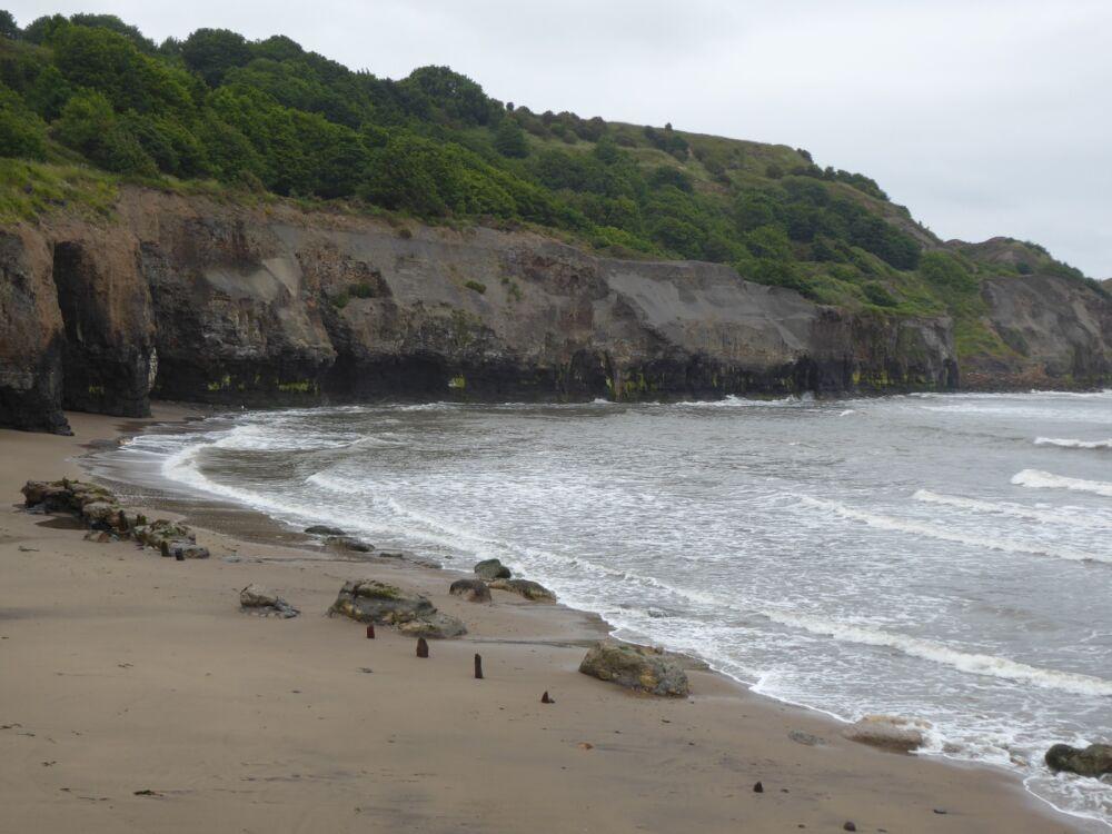 Sandsend dog-friendly beach, North Yorkshire - Yorkshire dog-friendly beaches and dog walks