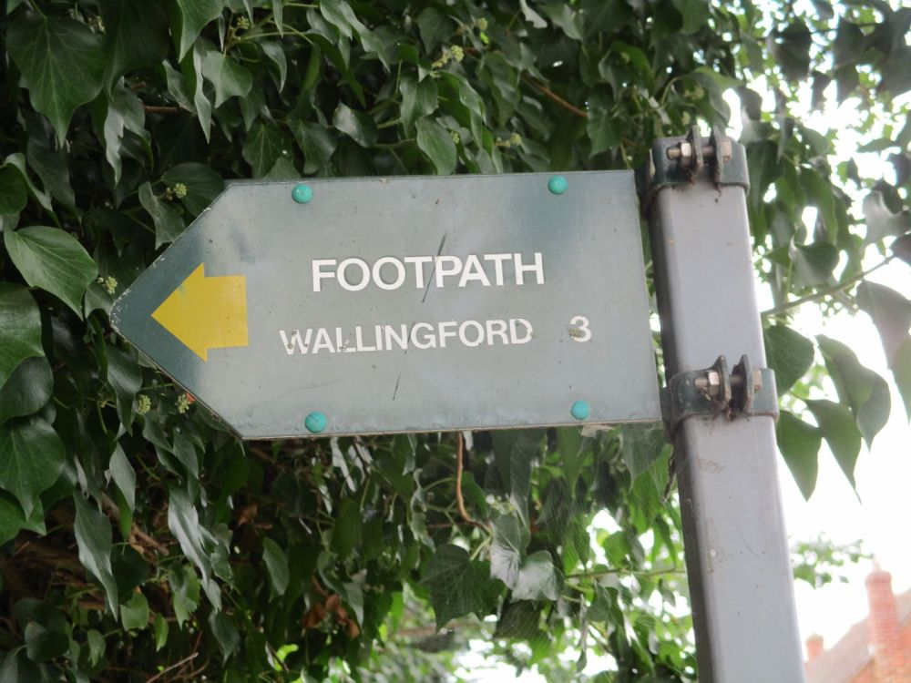 Dog-friendly pub and dog walk near Didcot, Oxfordshire - Berkshire dog walk.JPG