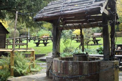 M25 dog-friendly pub and dog walk near Reigate, Surrey - Driving with Dogs