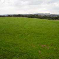 M6 Junction 26 Beacon Country Park dog walk, Lancashire