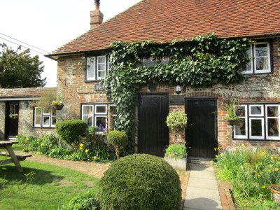 A27 dog walks and a stylish country pub, East Sussex - Driving with Dogs