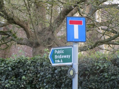 A29 dog-friendly village pub and dog walk, West Sussex - Driving with Dogs