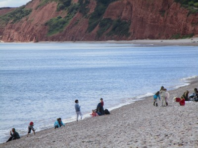 Heritage beach and dog walk, Devon - Driving with Dogs