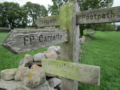 Wensleydale dog walks and dog-friendly B&B, North Yorkshire - Driving with Dogs
