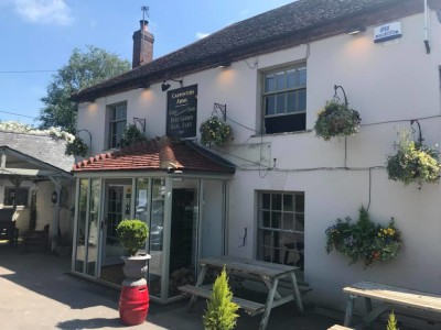 A34 dog-friendly pub and dog walk, Hampshire - Driving with Dogs