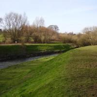 Sandwell Valley dog walk, West Midlands - Dog walks in the West Midlands