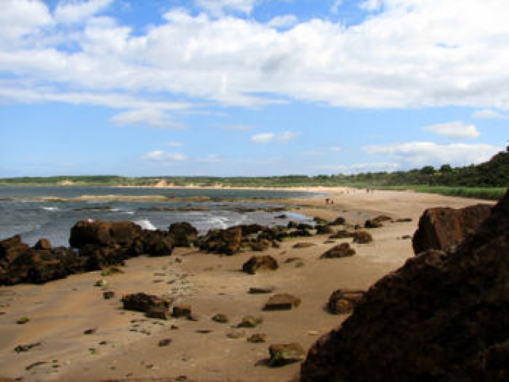 Gullane Bents dog-friendly beach, Scotland - Dog walks in Scotland