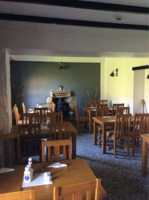Dog-friendly pub and dog walk near Hayle, Cornwall - Driving with Dogs