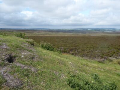 A dog walk on the moors from the Beacon, North Yorkshire - Driving with Dogs
