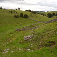 Scenic dale dog walk with two dog-friendly pubs, Derbyshire - start