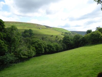 A684 dog walk with waterfalls, swimming and cafe, North Yorkshire - Driving with Dogs