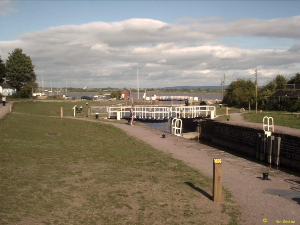 Lydney Canal dog walk, Gloucestershire - Dog walks in Gloucestershire