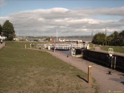 Lydney Canal dog walk, Gloucestershire - Driving with Dogs