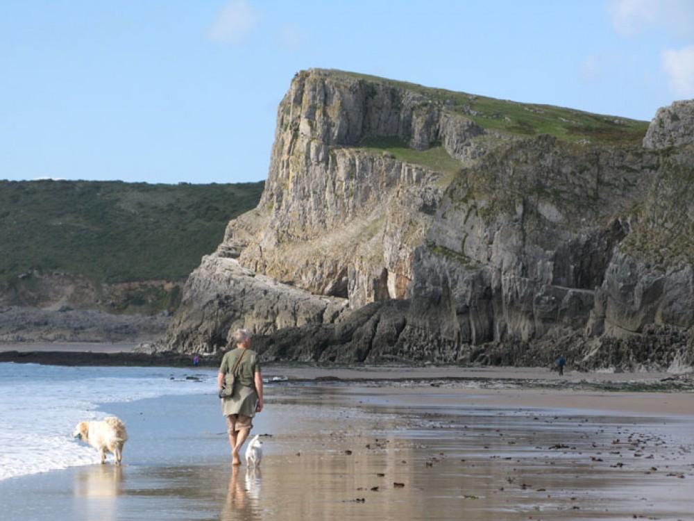 Mewslade dog-friendly beach, Gower Peninsula, Wales - Wales dog-friendly beach and dog walk