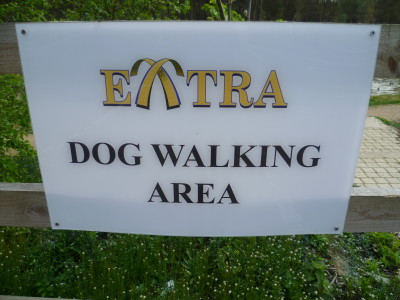 M40 Beaconsfield Services dog walk, Buckinghamshire - Driving with Dogs