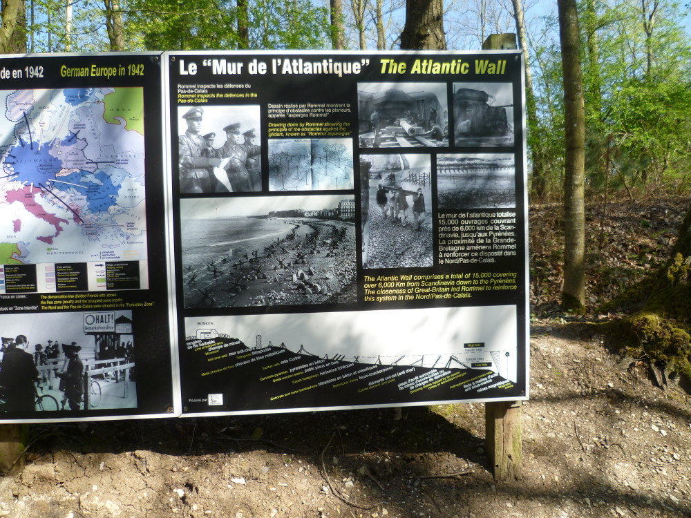 A26 exit 2 dog walk in the Forest and World War 2 Museum, France - Image 2