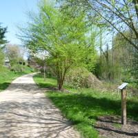 Bourg et Comin quiet village dog walk, France - Image 2