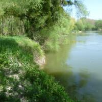 Bourg et Comin quiet village dog walk, France - Image 3