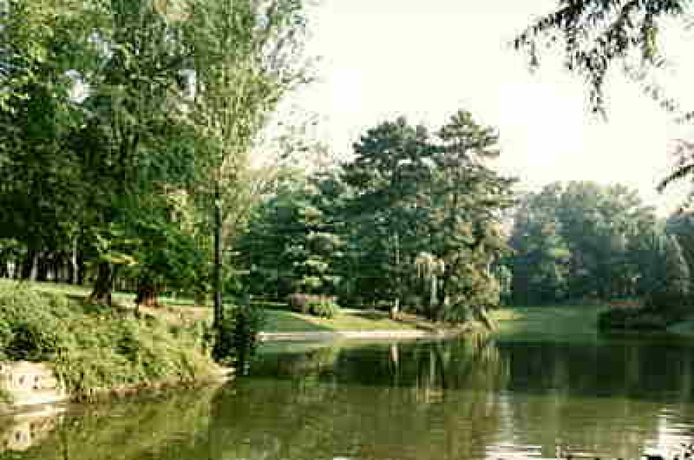 Douai short dog walk, France - Image 3