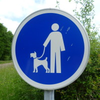 A26 exit 23 dog walk in Lusigny, France - Image 5