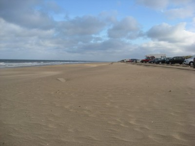 Huttoft car terrace dog friendly beach, Lincolnshire, Lincolnshire - Driving with Dogs