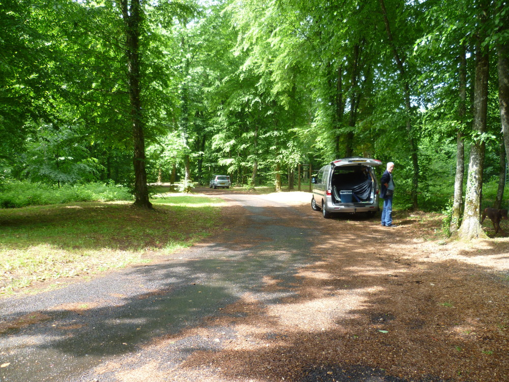 A31 doggiestop near exit 11, France - Image 3