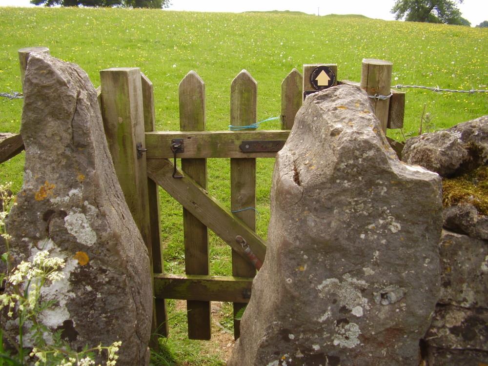 Tissington dog walk, Derbyshire - Dog walks in Derbyshire