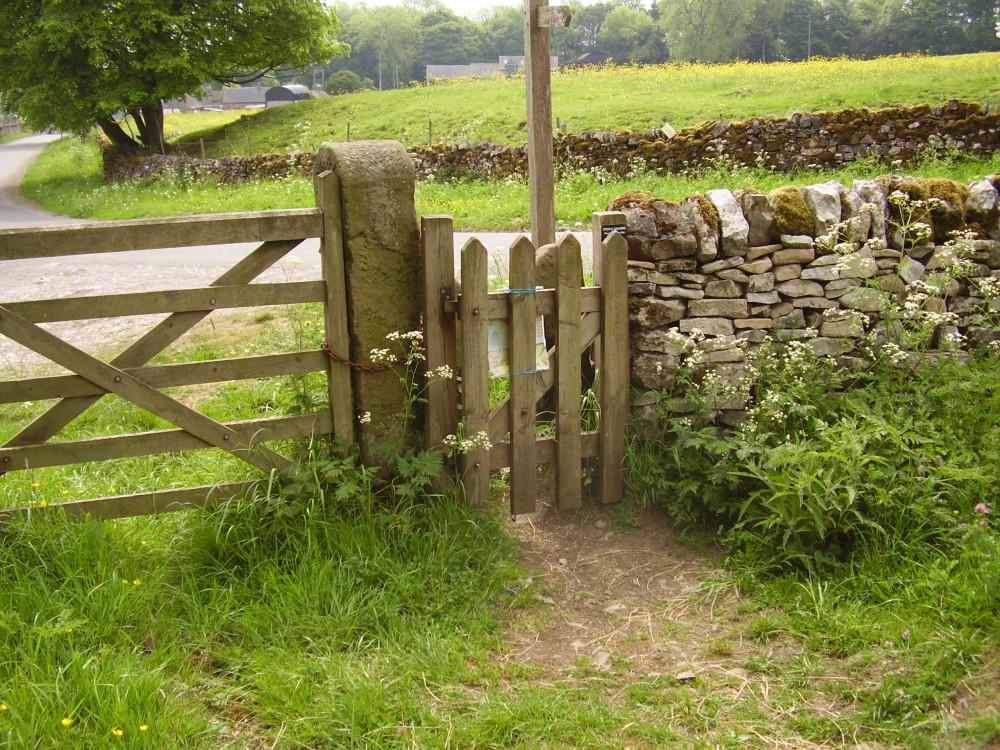 Tissington dog walk, Derbyshire - Image 15