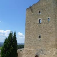 A7 exit 22 doggiestop in a wine village, France - Image 2