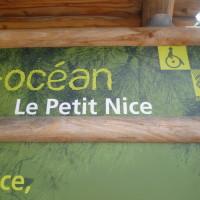 Dog-friendly beach near Arcachon, France - Image 1