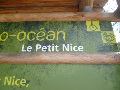 Dog-friendly beach near Arcachon, France - Driving with Dogs