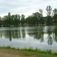 A62 Exit 6 Lakeside dog walk, France - Image 3