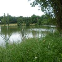 A62 Exit 6 Lakeside dog walk, France - Image 4