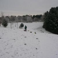 Tandle Hill dog walks, Lancashire - Image 7