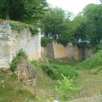 A89 exit 13 dog walk near Mussidan, France - Image 1