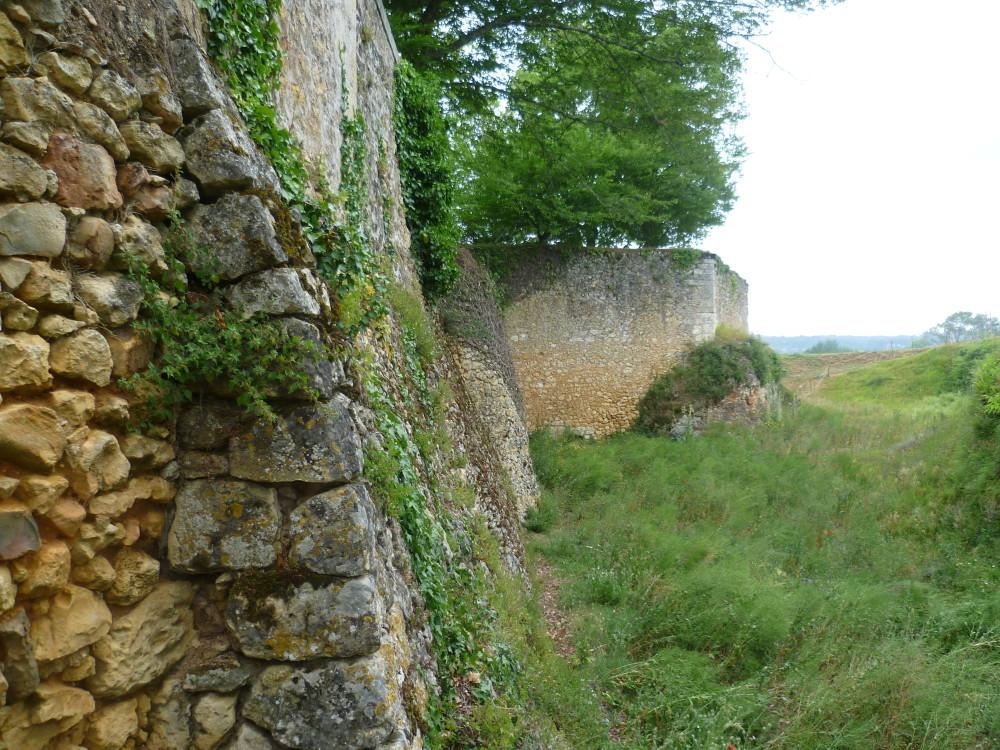 A89 exit 13 dog walk near Mussidan, France - Image 3