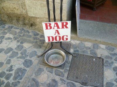 A9 Exit 34 doggiestop in Pézenas, France - Driving with Dogs