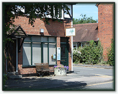 Severn Vet Centre, Warwickshire - Driving with Dogs
