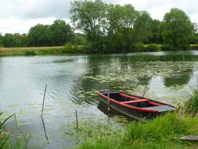 A11 exit 12 dog walk by the Loir, France - Driving with Dogs