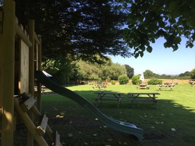 A456 dog-friendly pub and dog walk near Tenbury Wells, Worcestershire - Driving with Dogs