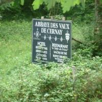 Vindrins autoroute A10 break and dog walk, France - Image 3