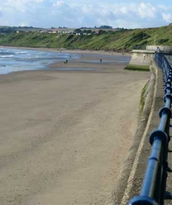 Filey dog-friendly beach, Yorkshire - Driving with Dogs