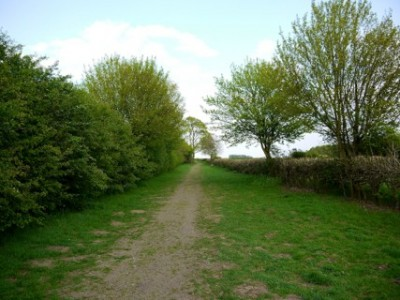 Lotherton Hall dog walk, West Yorkshire - Driving with Dogs