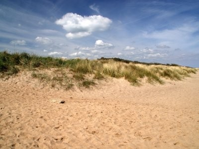 Anderby Creek dog-friendly beach, Lincolnshire - Driving with Dogs