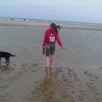 Merlimont Plage dog-friendly beach, France - Image 3