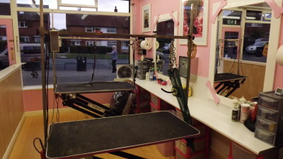 DOGGIE STYLE grooming, West Yorkshire - Driving with Dogs